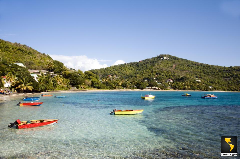 how to call saint vincent and the grenadines